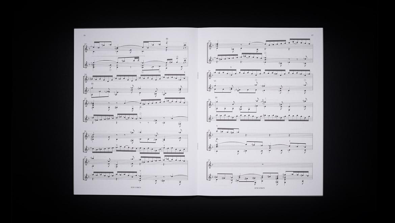 alberto_mesirca_pubblications_Double_concerto_bach_interno